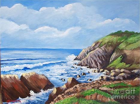 Sunshine in Byron Bay Cliffs by Jean Pierre Bergoeing