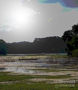 Sunshine Lake by Annette Allman