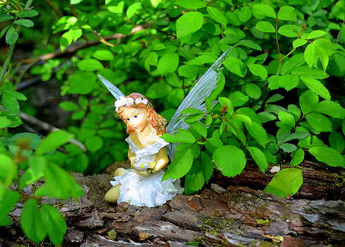 Sunshine Makes Me Happy Woodland Fairies by Linda Rae Cuthbertson