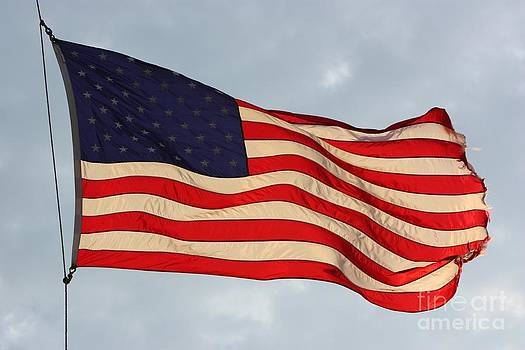 Sunshine on US Flag with Bluesky by Robert D  Brozek