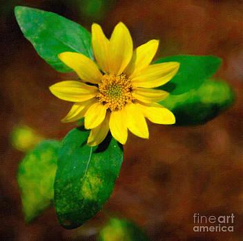 Dale Powell - Sunshine Yellow