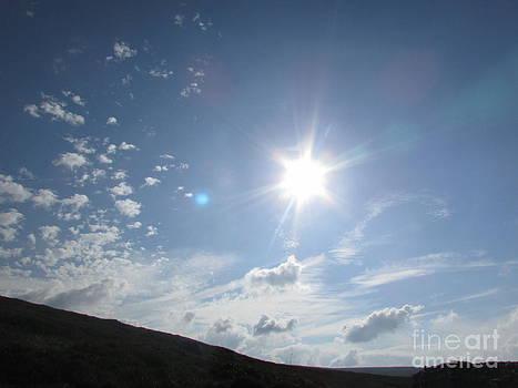 Sunshine's Happy by Sylvia Howarth