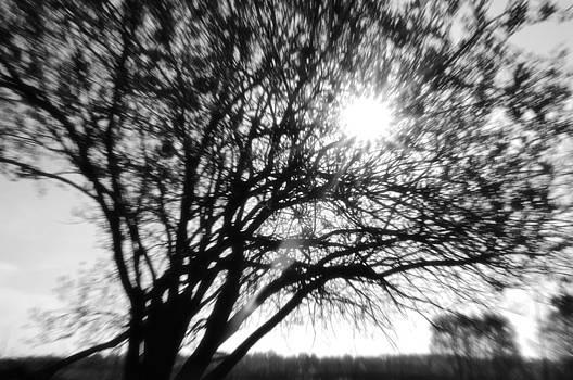 Sunstroke by Kirill Puchkov