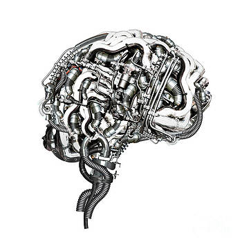 Super Brain by Diuno Ashlee