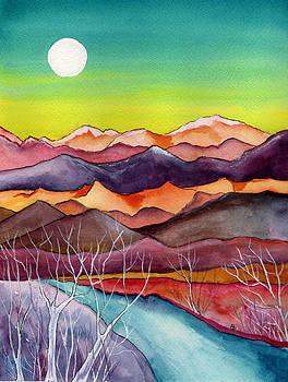 Super Moon by Brenda Owen