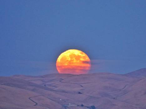 Super Moon Rising 7/12/14 by Brian Maloney
