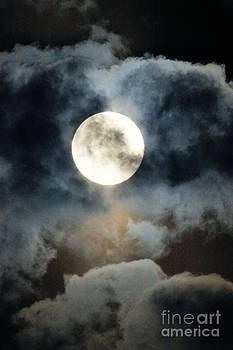 Super Moon Weekend 2013 by Tabatha Knox