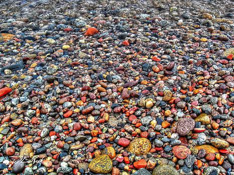 William Reek - Superior Shore Treasure