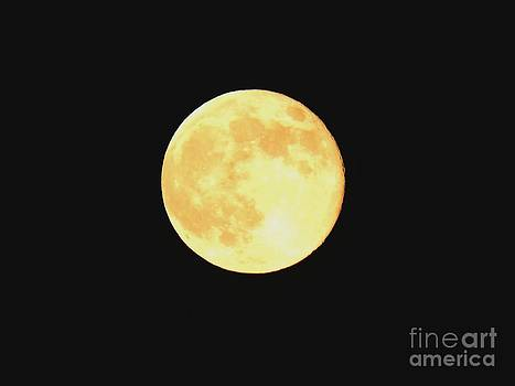Supermoon 2013 by Chad Thompson