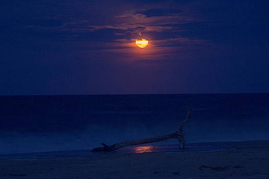 Supermoon at the beach by Derek Reichert