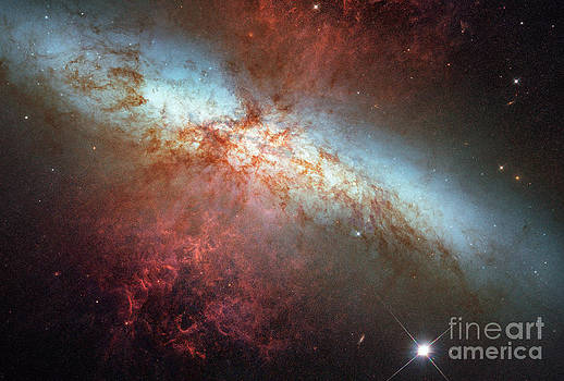 Science Source - Supernova In Nearby Galaxy M82