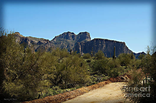 Nancy Stein - Superstition Mountain 5