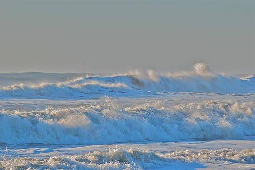 Surf or Ski by Lori Hamilton