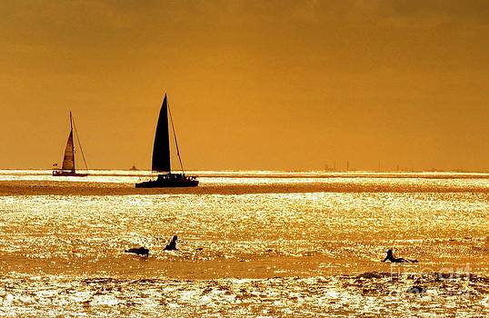Surfers and Sailboats by Kristine Merc