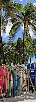 Surfin' Waikiki by DJ Florek