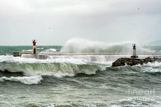 Andrew  Hewett - Surfing Dream