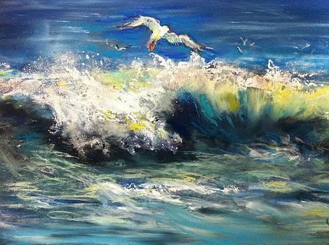 Surfing Gull by Shirley Roma Charlton