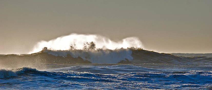 Surfing Spirit by Lori Hamilton