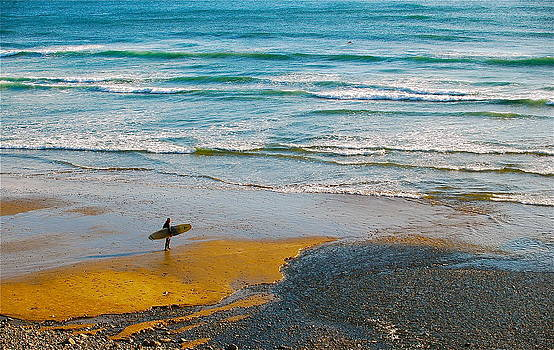 Surf's Up by Mark Lemon