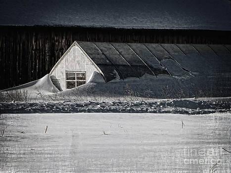 Dee Flouton - Surreal Snow