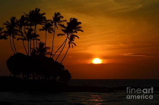 Surreal Sunset Big Island Hawaii by Greg Cross