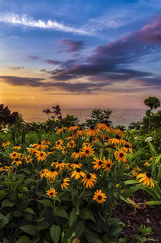 Susan's sunset by Mark Papke