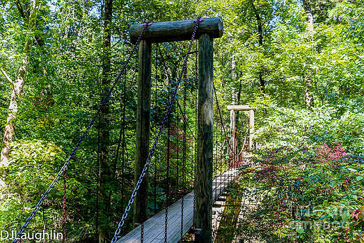 Suspension Bridge Crowley Ridge State Park Arkansas  by DJ Laughlin