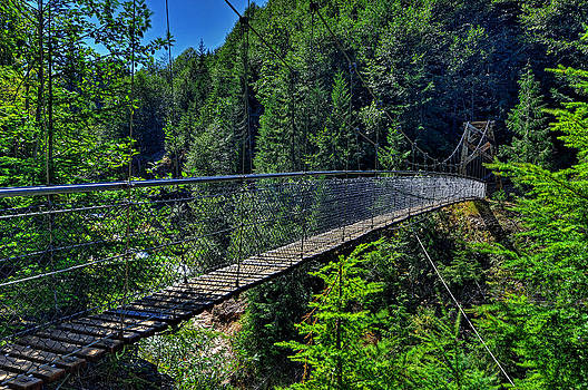 Suspension bridge over gorge by Jim Boardman