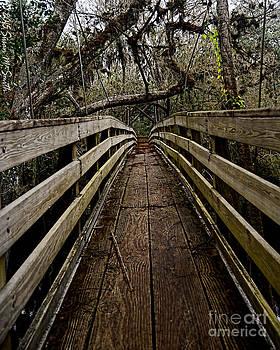 Suspension Bridge by Susan Smith