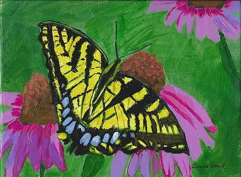 Swallowtail Butterfly by Brenda L Smith