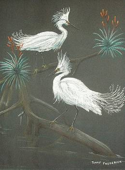 Swampbirds by Terry Frederick
