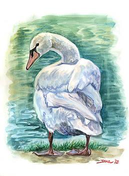 Swan by Jana Goode
