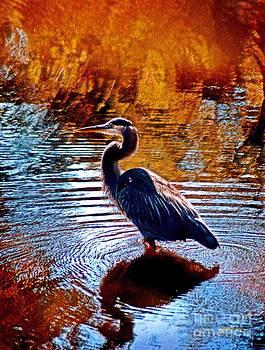 Jeff McJunkin - Swan Lake Heron