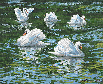 Swan Lake by Reuven Gayle