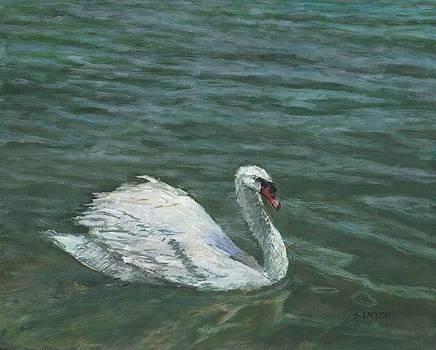 Sandra Lytch - Swan