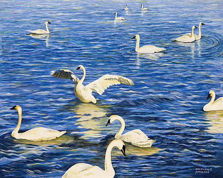 Swans In Late Afternoon by Mary Ann King