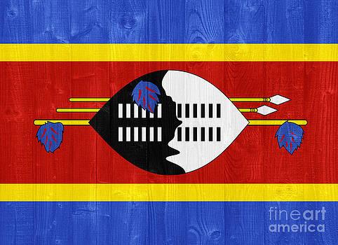 Swaziland flag by Luis Alvarenga