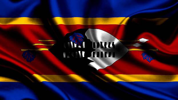 Valdecy RL - Swaziland Flag