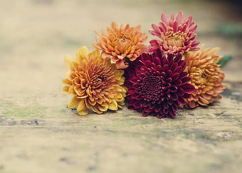 Heather Applegate - Sweet Autumn