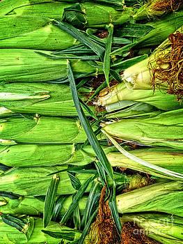 Dee Flouton - Sweet Corn for Sale