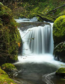 Sweet Creek Falls in November by Kristal Talbot