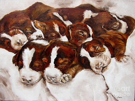 Sweet Sleep by Diane Kraudelt