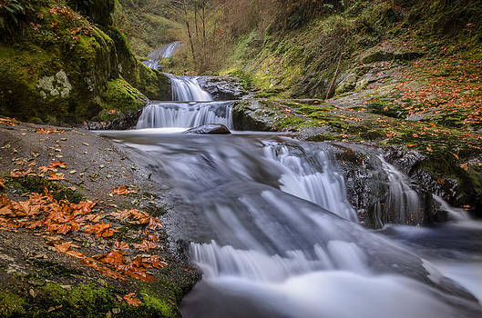 Sweetest Creek by Chris Malone