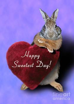 Jeanette K - Sweetest Day Bunny Rabbit