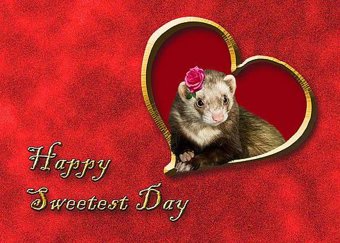 Jeanette K - Sweetest Day Ferret