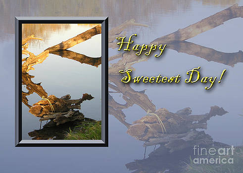 Jeanette K - Sweetest Day Fish