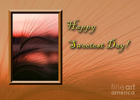 Jeanette K - Sweetest Day Grass Sunset
