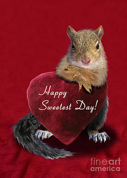Jeanette K - Sweetest Day Squirrel