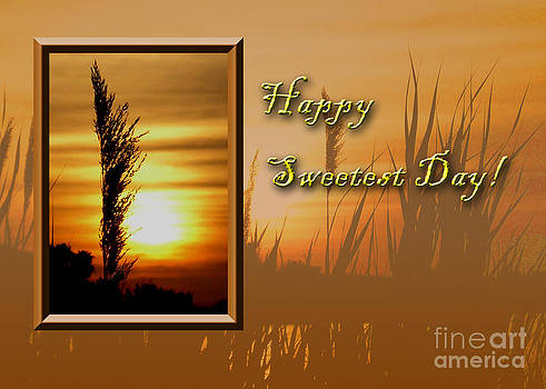 Jeanette K - Sweetest Day Sunset