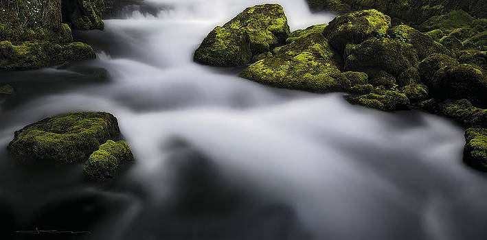 Sweetwater Spring by Jens Tischer